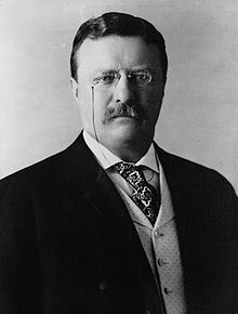 Did Roosevelt advocate the government keep their hands off AT&T and other consolidating telecom companies?