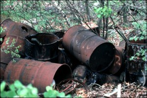 rotting barrel