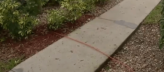 Comcast left this cable lying across a sidewalk in a retirement community in Fort Myers, Fla. for 11 months.