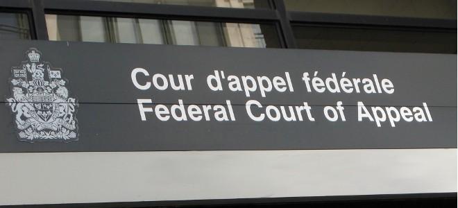 copyright infringement Archives · Stop the Cap!